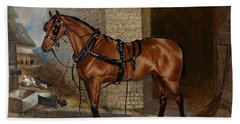 Horse In Harness Hand Towel