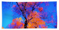 Indian Summer Autumn Scene  Hand Towel