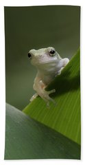 Bath Towel featuring the photograph Juvenile Grey Treefrog by Daniel Reed