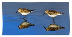 Juvenile White-rumped Sandpipers Bath Towel