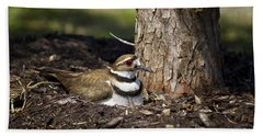 Killdeer Hand Towel