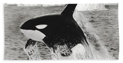 Killer Whale Bath Towel
