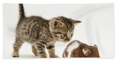 Kitten And Hamster Hand Towel