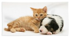 Kitten With Sleepy Pup Hand Towel