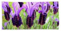 Lavenders Bath Towel