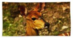 Lesser Kudu Hand Towel