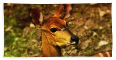 Lesser Kudu Bath Towel