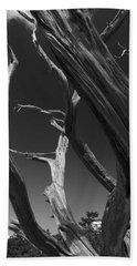 Bath Towel featuring the photograph Lone Tree by David Gleeson