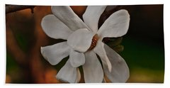 Hand Towel featuring the photograph Magnolia Bloom by Barbara McMahon