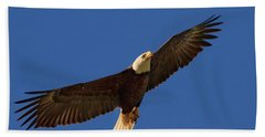 Majestic Bald Eagle Hand Towel