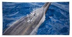 Maui Dolphin Hand Towel