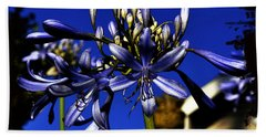 Morning Blooms Bath Towel by Clayton Bruster