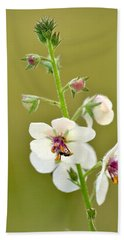Bath Towel featuring the photograph Moth Mullein by JD Grimes