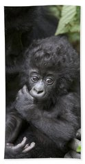 Mountain Gorilla 3 Month Old Infant Hand Towel by Suzi Eszterhas