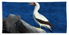 Nazca Booby Hand Towel by Tony Beck