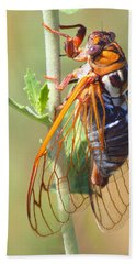 Noisy Cicada Bath Towel by Shane Bechler