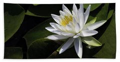 Nymphaea Marliacea 'albida' Bath Towel
