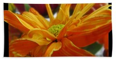 Hand Towel featuring the photograph Orange Juice Daisy by Debbie Portwood