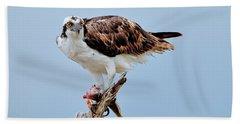 Osprey In The Morning Bath Towel