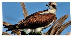 Osprey On A Windy Morning Hand Towel