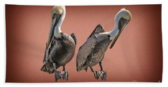 Hand Towel featuring the photograph Pelicans Posing by Dan Friend