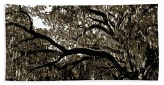 Hand Towel featuring the photograph Picnic Under The Oak by DigiArt Diaries by Vicky B Fuller