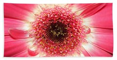 Hand Towel featuring the photograph Pink Gerbera Daisy Close-up by Kerri Mortenson