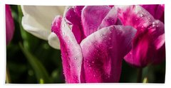 Hand Towel featuring the photograph Pink Tulip by David Gleeson
