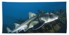 Port Jackson Shark Bath Towel