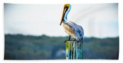 Hand Towel featuring the photograph Posing Pelican by Shannon Harrington