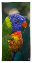Posing Rainbow Lorikeet. Bath Towel