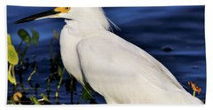 Profile Of A Snowy Egret Hand Towel