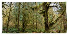 Rain Forest In Fall Hand Towel