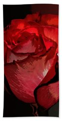 Rare Red Rose Hand Towel by Phyllis Denton