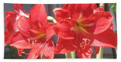 Hand Towel featuring the photograph Red Amaryllis by Kume Bryant