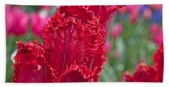 Red Fringed Tulip Flower Macro Art Prints Hand Towel