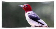 Red-headed Woodpecker - Statue Hand Towel