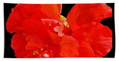 Hand Towel featuring the photograph Red Hibiscus by Cindy Manero