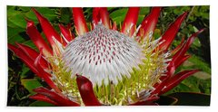 Red King Protea Hand Towel