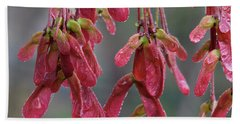 Red Maple Keys With Raindrops Hand Towel