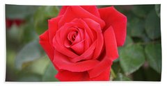 Hand Towel featuring the photograph Red Rose by Donna  Smith