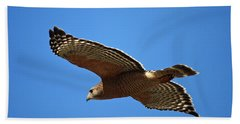 Red Shouldered Hawk In Flight Hand Towel by Carol Groenen