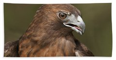 Hand Towel featuring the photograph Red-tailed Hawk by Doug Herr