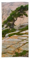 Schoodic Cliffs Bath Towel by Brent L Ander