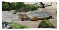 Sea Turtle 1 Hand Towel
