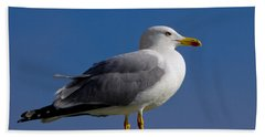 Hand Towel featuring the photograph Seagull by David Gleeson