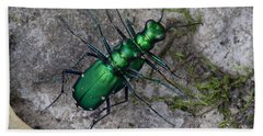 Six-spotted Tiger Beetles Copulating Bath Towel by Daniel Reed