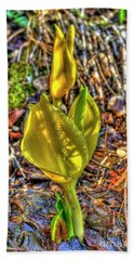 Skunk Cabbage - 2 Hand Towel by Rod Wiens
