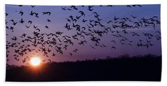 Snow Geese Migrating Hand Towel