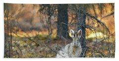 Snowshoe Hare Bath Towel